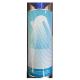 Diluente Speciale per fluorescenti